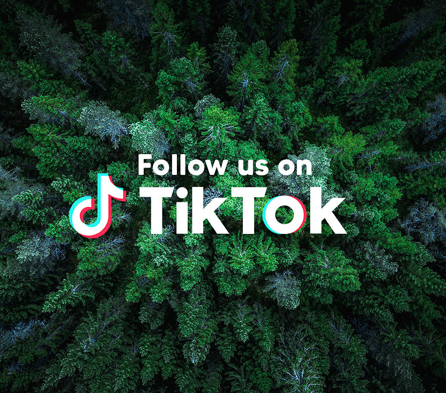 Follow us on TikTok