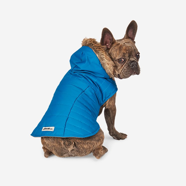 Chinook Hooded Pet Parka large version